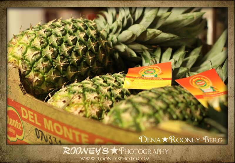 Dena_Rooney_Pinapple Infused Vodka_4