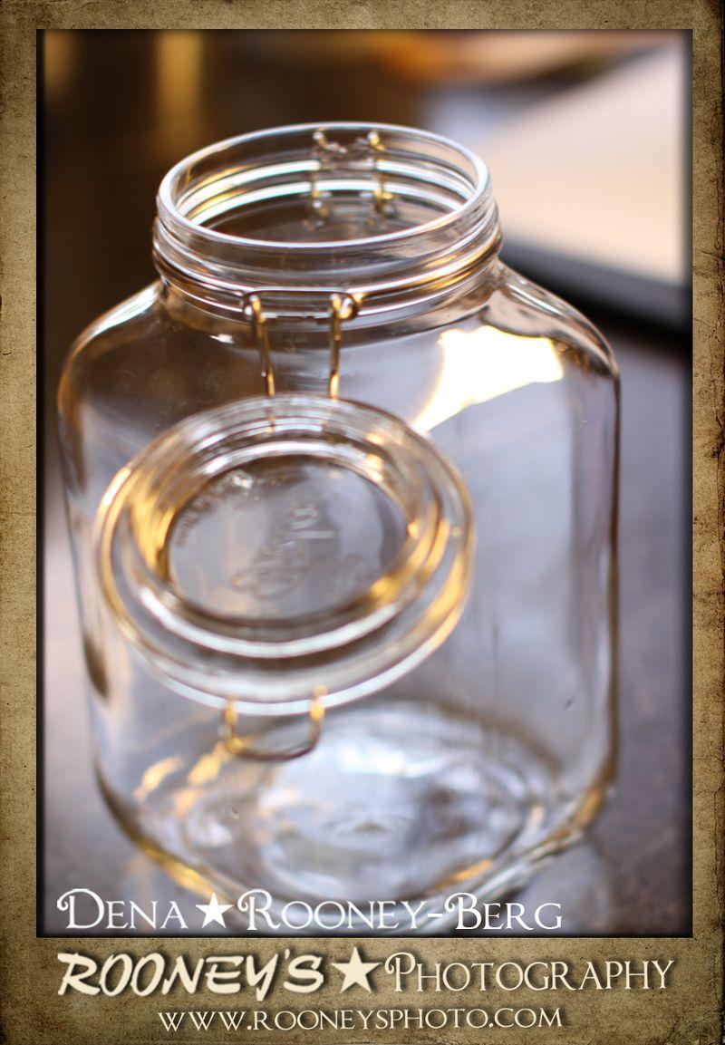 Dena_Rooney_Pinapple Infused Vodka_2