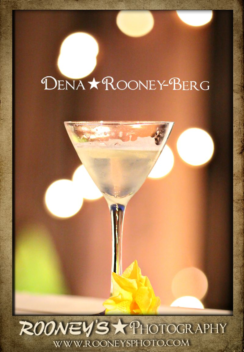 Dena_Rooney_Pinapple Infused Vodka_14