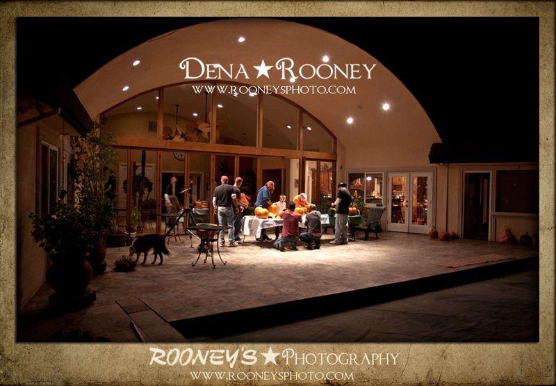 Dena Roone Berg-3
